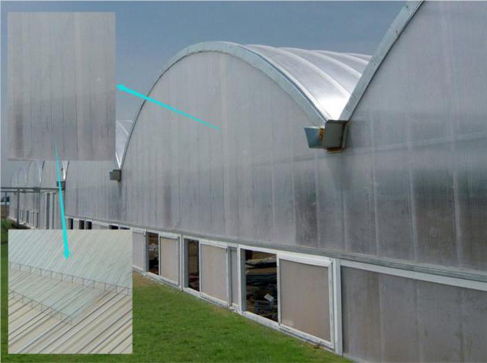 Особенности использования поликарбоната для теплиц